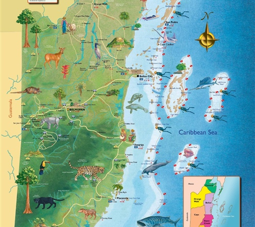 Belize Wildlife & Cultural Map
