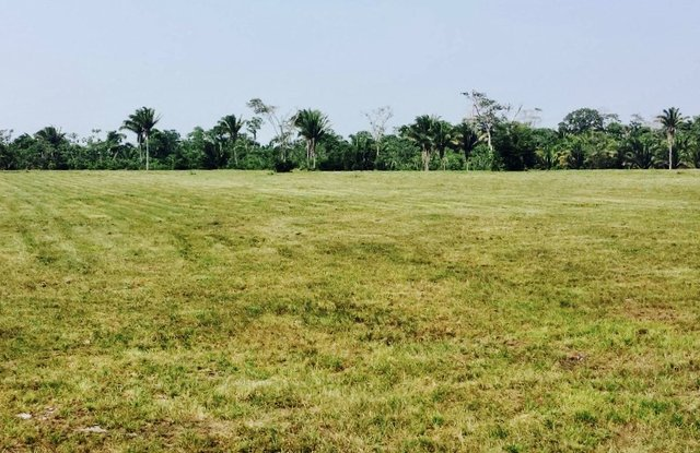 30 acres near a fresh water creek Independence , Belize
