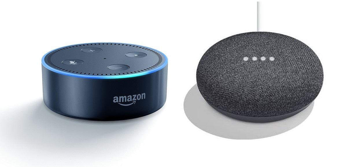 Google Mini  and  Amazon Echo Dot 2